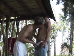 Just beautiful blonde twinks met in the woods by draw-well